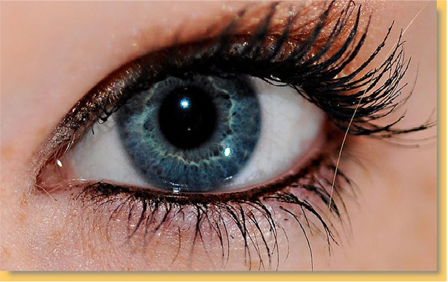 The Magic Of Eyes-Extreme Close Ups Of The Human Eye