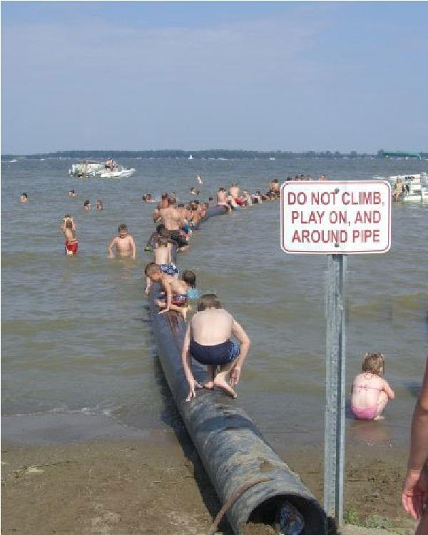 Disregarding Beach Signs-18 Hilarious Beach Fails That Will Make You Laugh Out Loud