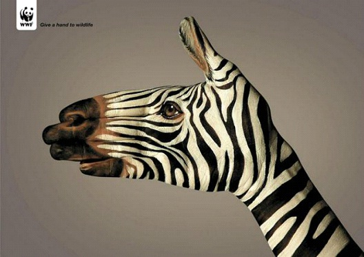 Zebras Feel-24 Creative WWF Ads