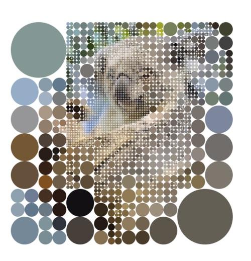 Koalas with circles-36 Weirdest Websites On The Internet