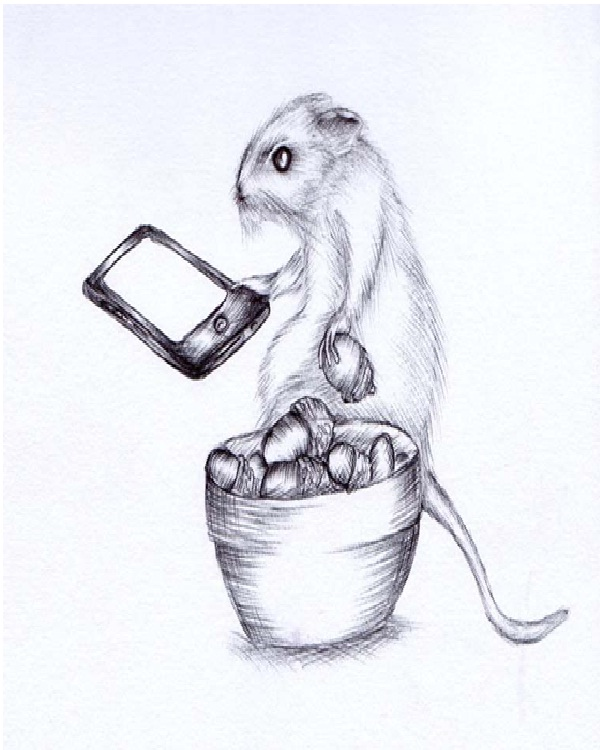 Mouse-Amazing Pen Drawings