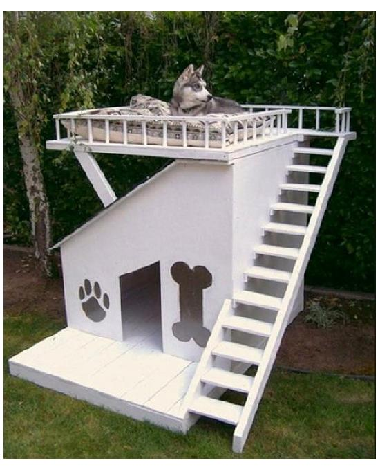 Dog House With Sun Deck-Amazing Dog Houses
