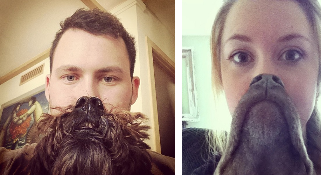 15 Epic Dog Beards That Will Make You Want To Have One