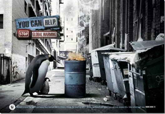 Where Will The Penguins Go?-24 Creative WWF Ads