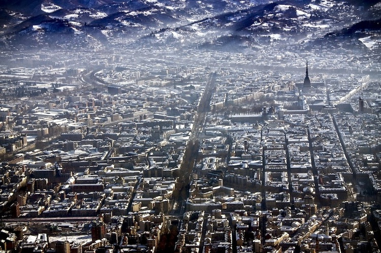 Turin-How Our World Appears To A Bird