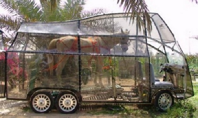 Clear Horse Box-Top 15 Weirdest Cars