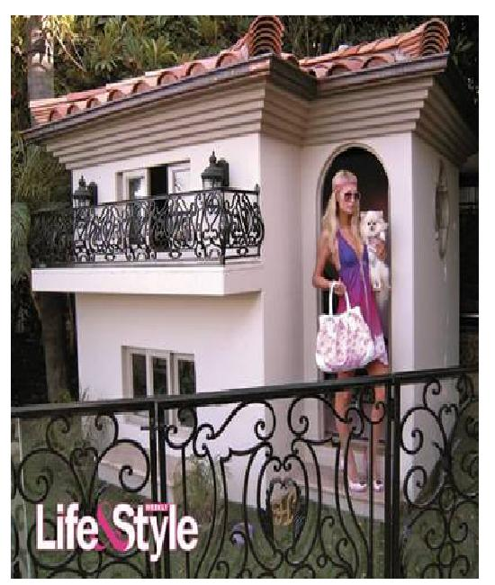 Paris Hilton's Dog's Mansion-Amazing Dog Houses