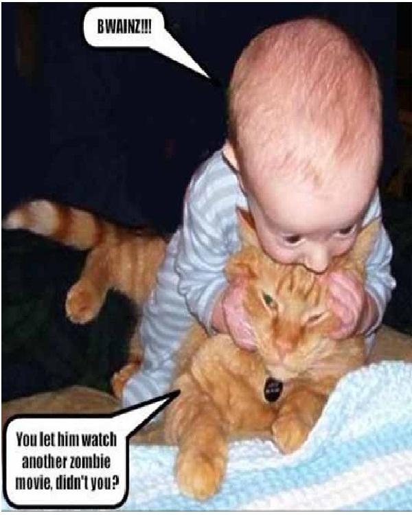 Baby Eats Cat-Craziest Baby Pics