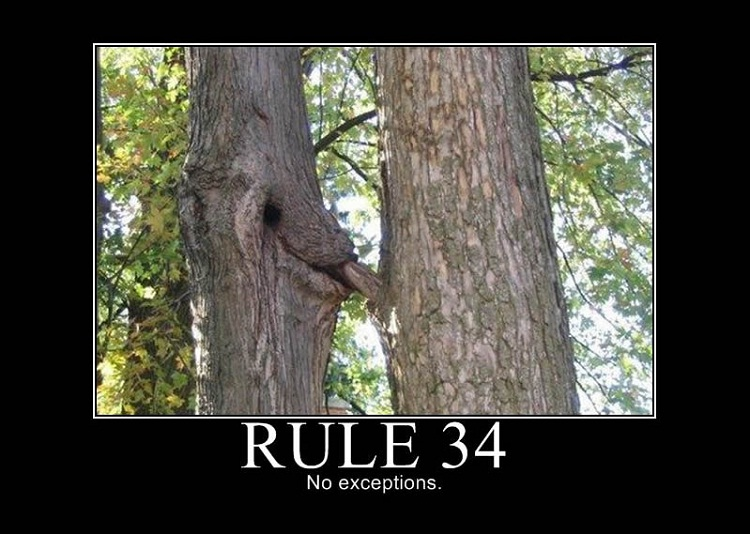 Rule 34-Interesting Porn Facts You Don't Know