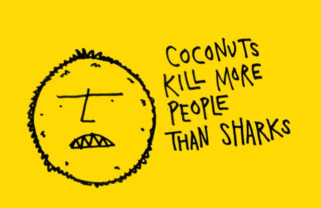 Dangerous coconuts-24 Interesting Yet Mind Blowing Facts