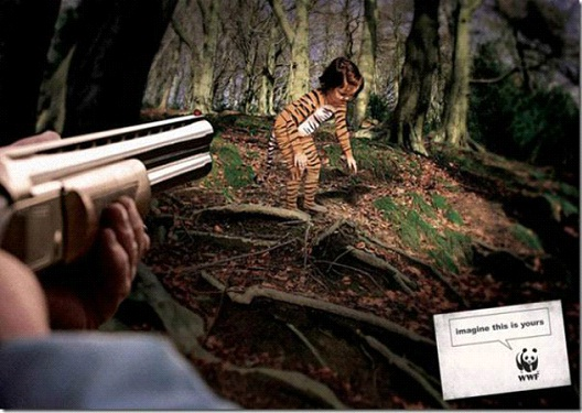 What If Someone Hunted Your Child?-24 Creative WWF Ads