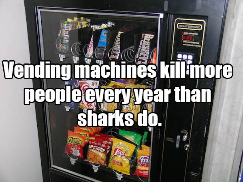 This Surprise Shark Fact-15 Amusing Facts That Are Actually True