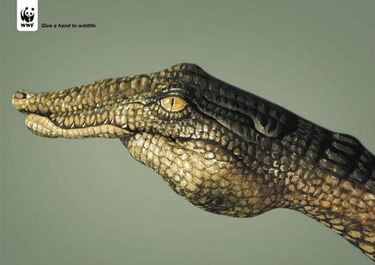 Even Crocodiles Deserve To Live-24 Creative WWF Ads