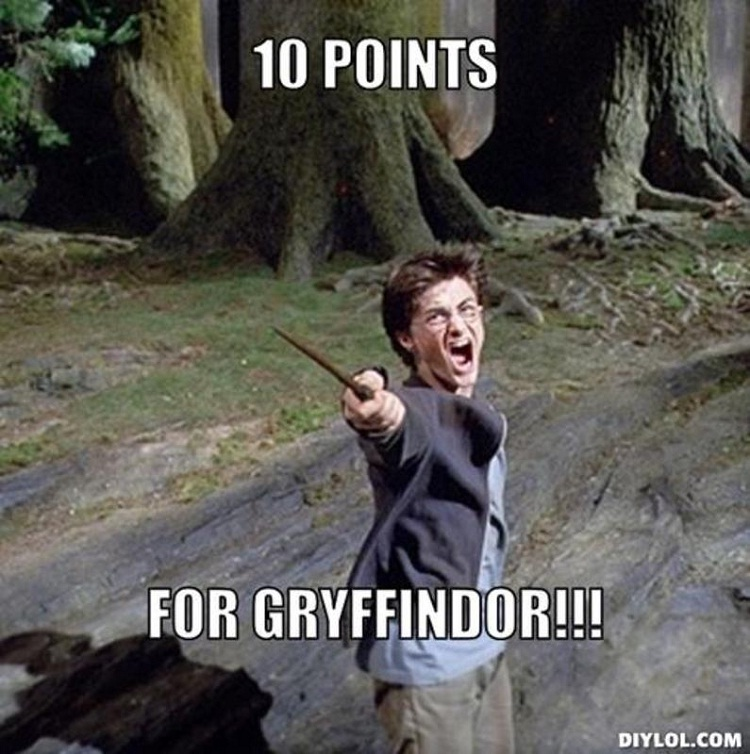 10 points with passion-'10 Points For Gryffindor' Memes