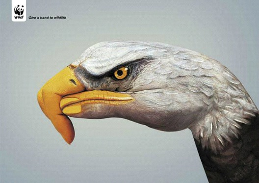 Eagles Are Part Of Our World-24 Creative WWF Ads