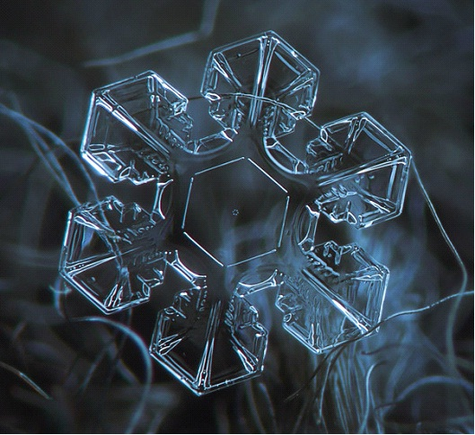 Star Light Star Bright-Awesome Close-Up Pictures Of Snowflakes By Alexey Kljatov