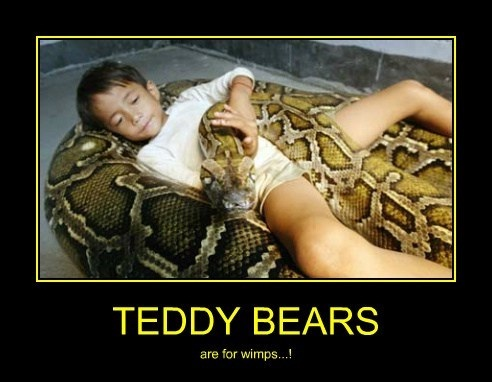 Who cares about a bear?-Meet Chuck Norris's Wife And Kids