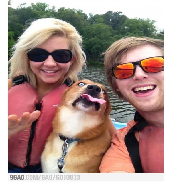 'I have the best-est Mom and Dad'-Dog Photo Bomb