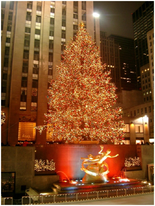 The Tree at Rockefeller Center-Most Amazing Christmas Trees From Around The Globe