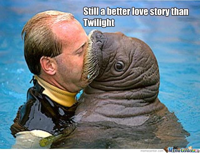 """Aww how cute-11 Best """"Still A Better Love Story Than Twilight"""" Memes"""