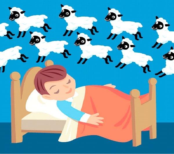 Pro Sleeper-Easiest Jobs In The World