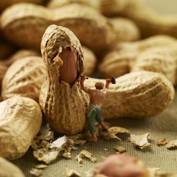 Get cracking-Adventures Of Tiny People In The World Of Food
