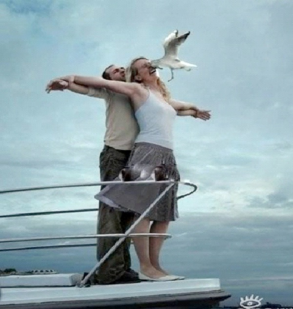 Titanic Meets The Birds-Unluckiest Moments Caught On Camera