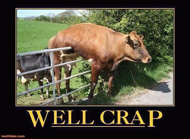 Do Not Feed The Animals-Hilarious Fence Fails