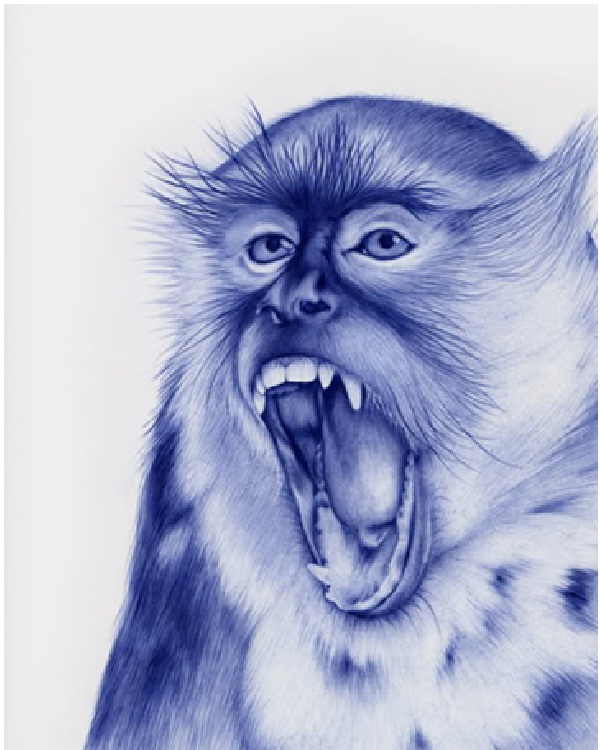 Monkey-Amazing Pen Drawings
