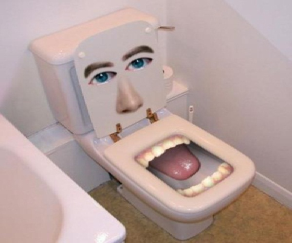 The Face Amazing Toilet Seats