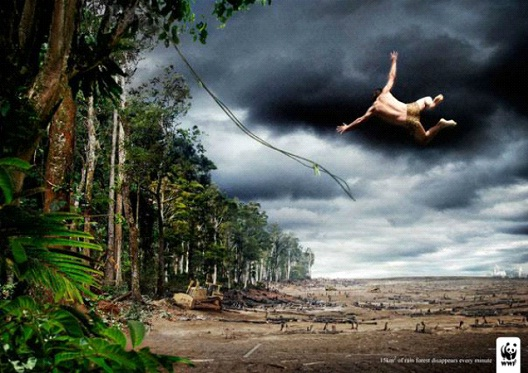 Tarzan Of The Desert-24 Creative WWF Ads