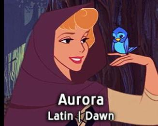 Aurora-15 Disney Princesses Names And Their Meanings In Different Languages