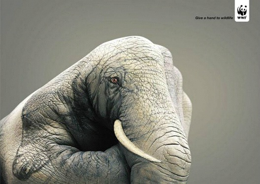 Elephants Have Families-24 Creative WWF Ads