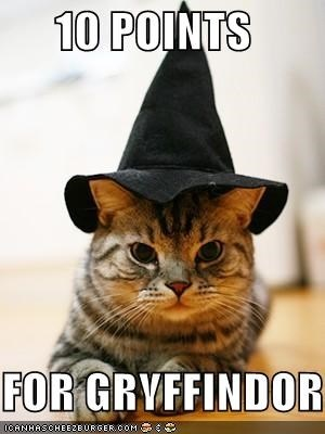 Even The Cat Is Involved-'10 Points For Gryffindor' Memes