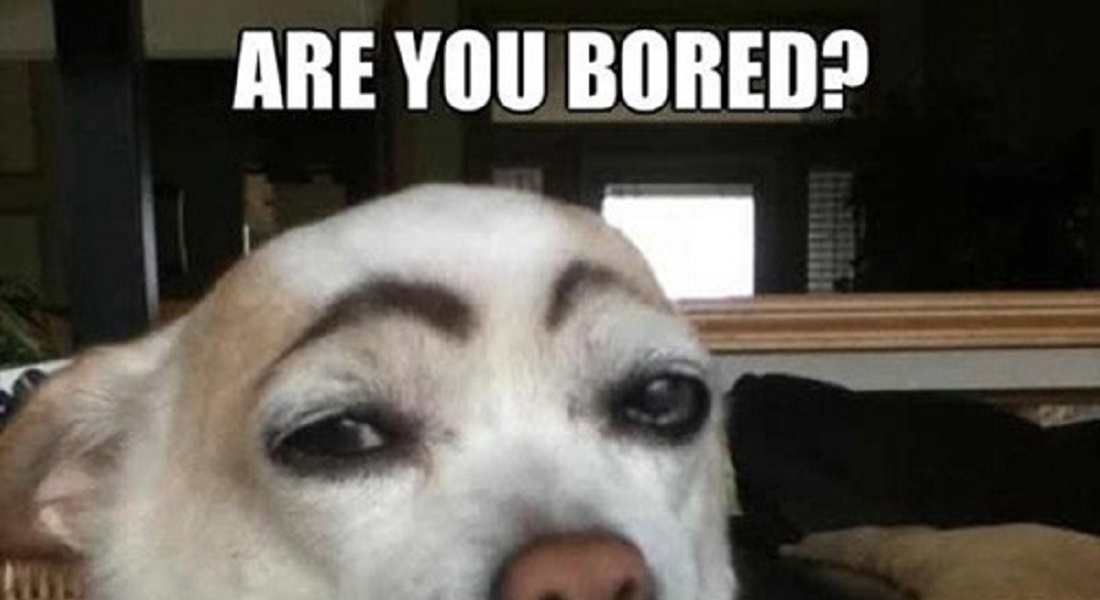 24 Funny Things People Do When Bored At Home