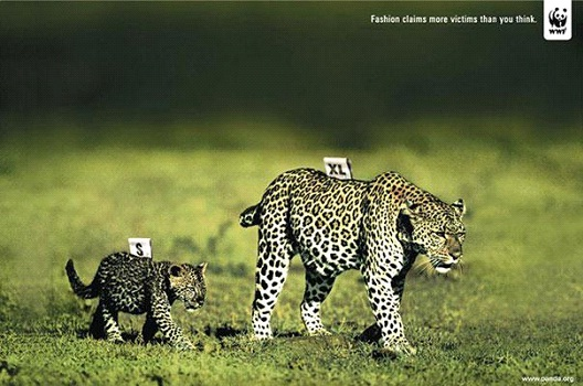 What Size Coat Will They Be?-24 Creative WWF Ads