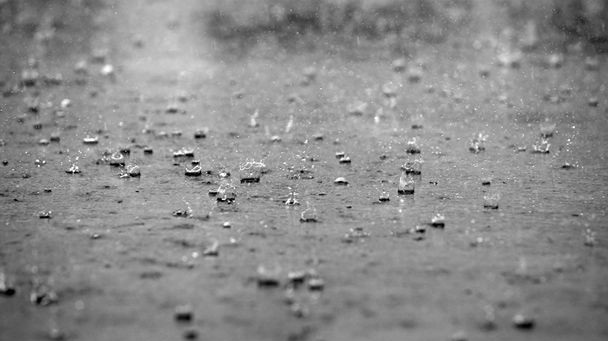 Is it raining?-36 Weirdest Websites On The Internet