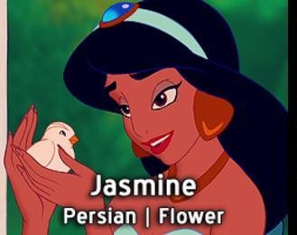 Jasmine-15 Disney Princesses Names And Their Meanings In Different Languages