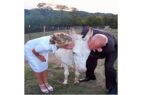 Wedding Photograph Disasters-Awkward Couple Photos