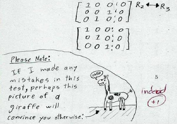 Go giraffe-Funny Exam Answers