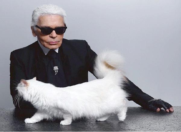 Choupette Lagerfeld-Famous Internet Cats