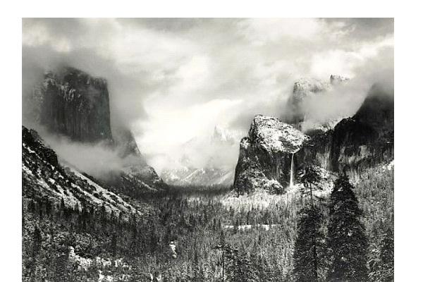 Garage Sale Ansel Adams Photo-Underestimated Items That Turned Out To Be Worth A Fortune