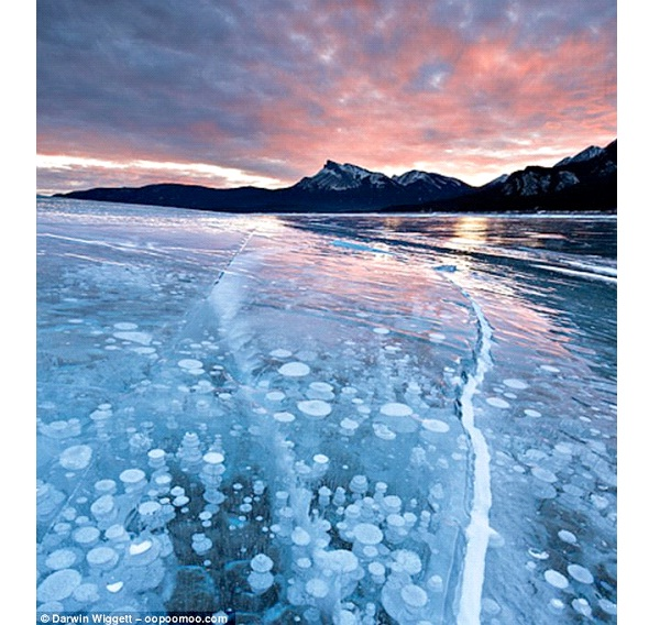 Abraham Lake-Most Amazing Ice Formations