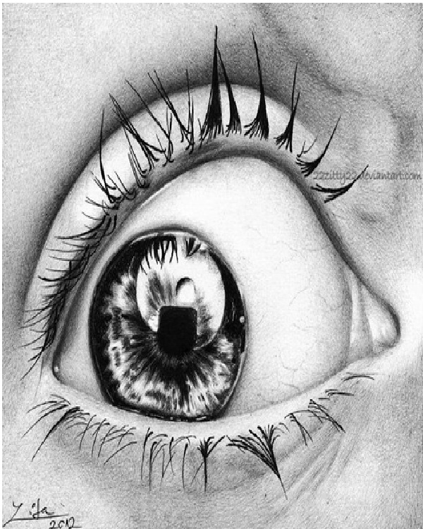 Eye-Amazing Pen Drawings