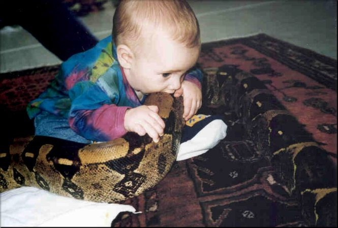 A real snake for dinner-Meet Chuck Norris's Wife And Kids