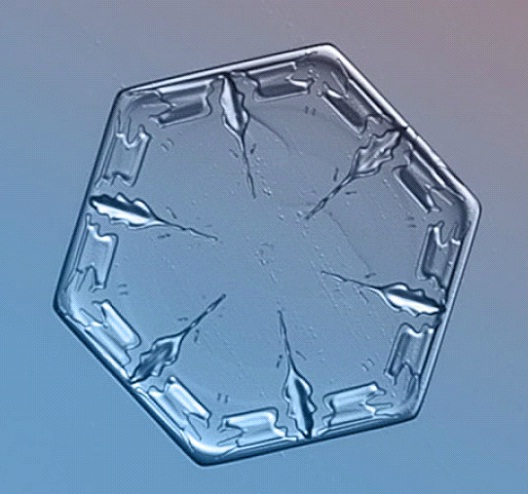Hectagon-Awesome Close-Up Pictures Of Snowflakes By Alexey Kljatov