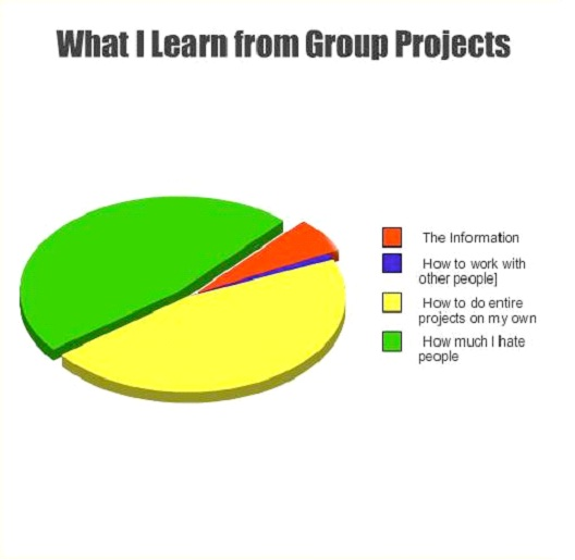 What I Learn From Group Projects-Hilarious Relatable Graphs