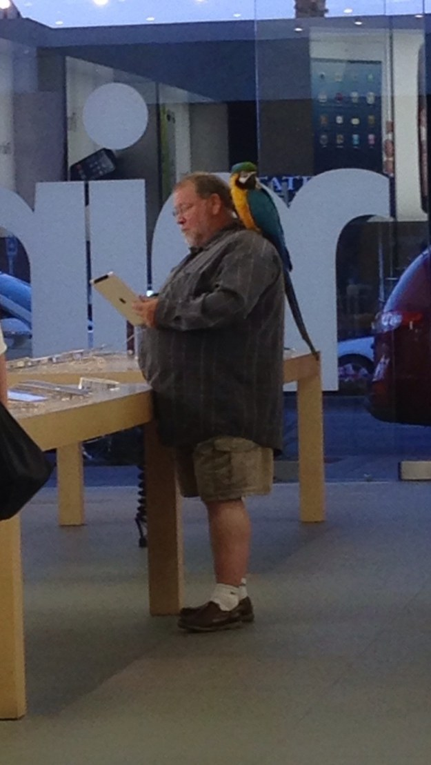 This Man with His Pet Parrot-15 Hilarious Things Ever Happened In Apple Stores