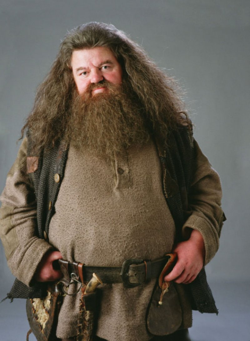 Hagrid's Beard Trap-15 Things You Probably Don't Know About Harry Potter Movies