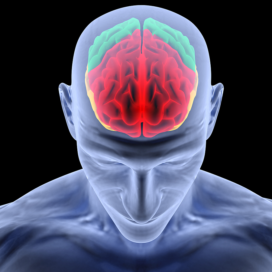 Brain Has No Pain!-15 WTFacts About Brain You May Not Know